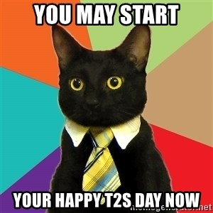 Business Cat - you may start your happy t2s day now