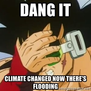 Facepalm Goku - dang it  climate changed now there's flooding