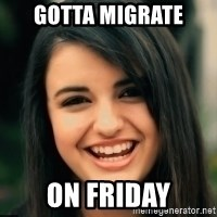 Friday Derp - Gotta Migrate  On friday