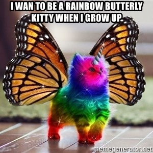 Rainbow, unicorn, butterfly, kitten - I wan to be a rainbow butterly kitty when I grow up