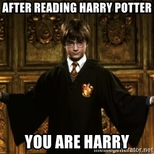 Harry Potter Come At Me Bro - After reading harry potter You are harry