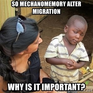 you mean to tell me black kid - So mechanomemory alter migration why is it important?