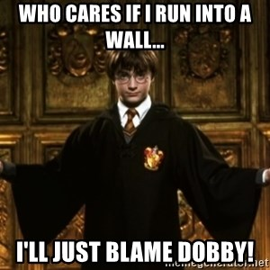 Harry Potter Come At Me Bro - who cares if i run into a wall... I'll just blame dobby!