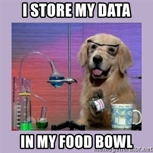 Dog Scientist - I store my data in my food bowl