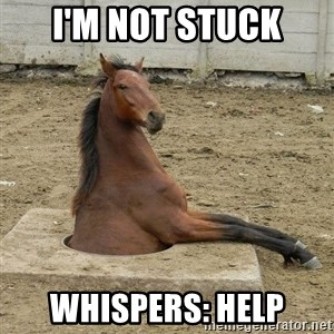Hole Horse - I'm not stuck Whispers: HELP