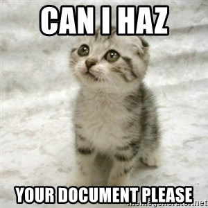 Can haz cat - can i haz  your document please