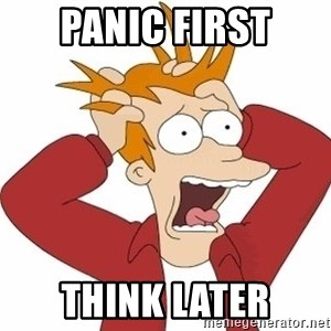 Fry Panic - PANIC FIRST THINK LATER