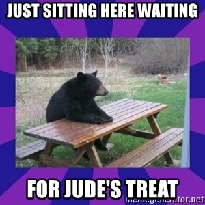 waiting bear - JUST Sitting Here Waiting For JUDE'S TREAT