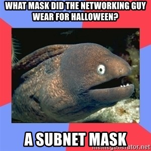Bad Joke Eels - What mask did the networking guy wear for halloween? A subnet mask