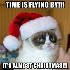 Grumpy Cat Santa Hat - TIME IS FLYING BY!!! IT'S ALMOST CHRISTMAS!!!