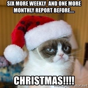 Grumpy Cat Santa Hat - six more weekly  and one more monthly report before.... christmas!!!!