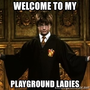 Harry Potter Come At Me Bro - Welcome to my  Playground Ladies