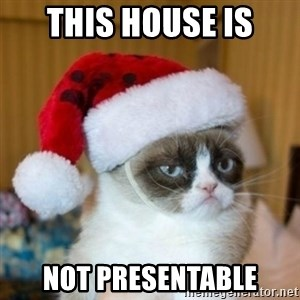 Grumpy Cat Santa Hat - this house is not presentable