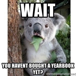 surprised koala - WaiT YOu Havent bought a yearbook yet?