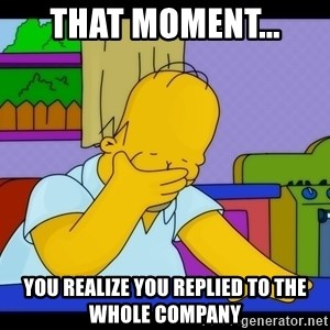 Homer Facepalm - That moment... You realize you Replied to the Whole Company