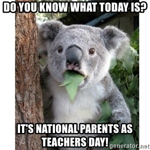 surprised koala - Do you know what today is? It's national parents as teachers day!