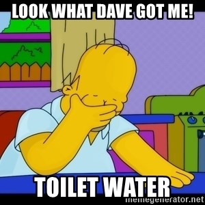 Homer Facepalm - look what dave got me! TOILET water