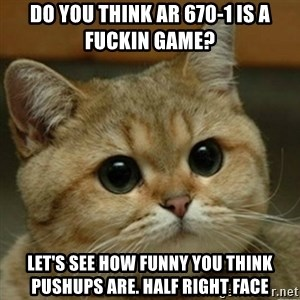 Do you think this is a motherfucking game? - Do you think AR 670-1 is a fuckin game? Let's see how funny you think pushups are. Half right Face