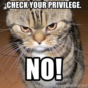 angry cat 2 - Check your privilege. NO!