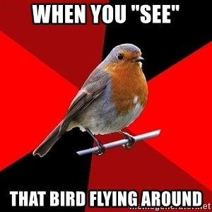 "Retail Robin - When you ""see"" that bird flying around"