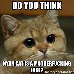 Do you think this is a motherfucking game? - Do you think Nyan cat is a motherfucking joke?
