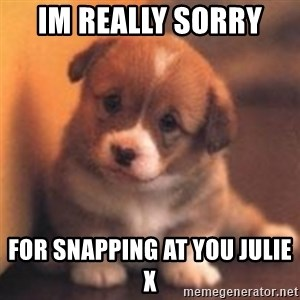 cute puppy - Im really sorry  For snapping at you julie x