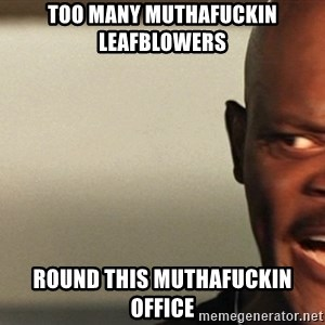 Snakes on a plane Samuel L Jackson - TOO MANY MUTHAFUCKIN LEAFBLOWERS ROUND THIS MUTHAFUCKIN OFFICE