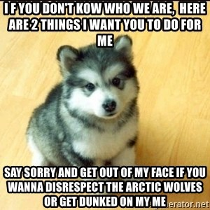 Baby Courage Wolf - I f you don't kow who we are,  here are 2 things I want you to do for me say sorry and get out of my face if you wanna disrespect the Arctic wolves or get dunked on my me
