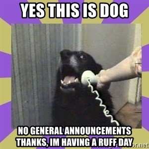 Yes, this is dog! - Yes this is dog no general announcements thanks, im having a ruff day