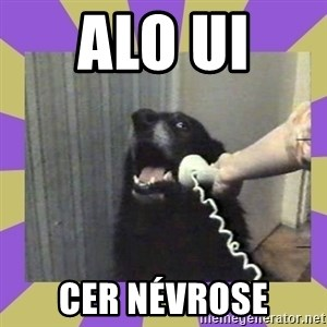 Yes, this is dog! - ALO UI  CER nÉVROSE