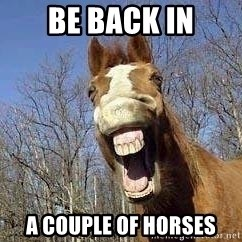 Horse - Be back in A couple of Horses