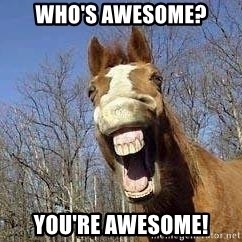 Horse - WHO's AWESOME? YOU'RE AWESOME!
