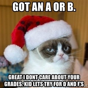 Grumpy Cat Santa Hat - Got AN A or B.  Great I DONT CARE ABout your grades. kid lets try for d and f's