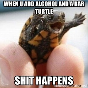 angry turtle - When u add alcohol and a bar turtle Shit happens