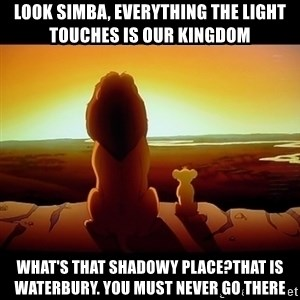 Simba - Look simba, everything the light touches is our kingdom What's that shadowy place?That is Waterbury. you must never go there