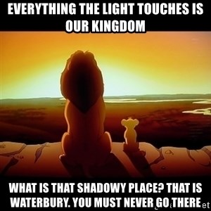 Simba - Everything the light touches is our kingdom What is that shadowy place? That is waterbury. you must never go there