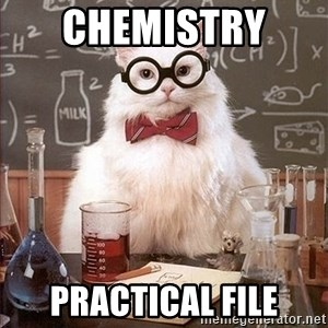 Science Cat - Chemistry  Practical File