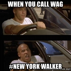 Vin Diesel Car - when you call wag #new york walker