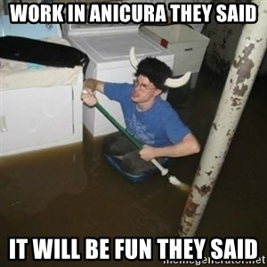 it'll be fun they say - WoRK in anicura they said it will be fun they said