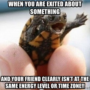 angry turtle - When you arE exited about something And Your friend clearly isn't at the same energy level or time zone!!