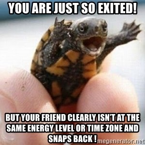 angry turtle - You are just sO exited! But yoUr friend clearly isn't at the same energy level or time zone and snapS back !