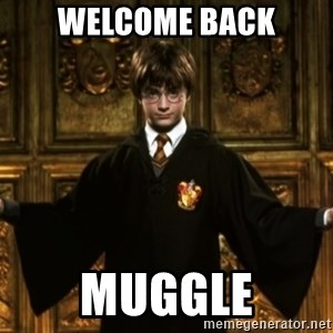 Harry Potter Come At Me Bro - Welcome back muggle