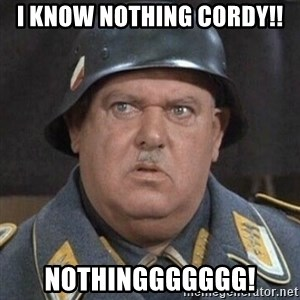 Sergeant Schultz - I KNOW NOTHING CORDY!! NOTHINGGGGGGG!