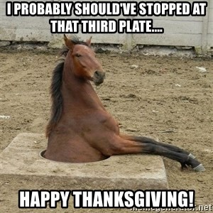 Hole Horse - I probably should've stopped at that third plate.... Happy Thanksgiving!