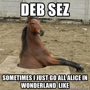 Hole Horse - DEB SEZ Sometimes I just go all alice in wonderland  like
