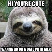 Sexual Sloth - Hi you're cute Wanna go on a date with me?