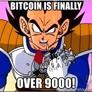 Over 9000 - Bitcoin is finally over 9000!