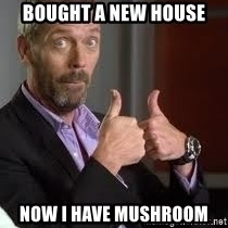 cool story bro house - bought a new house now i have mushroom
