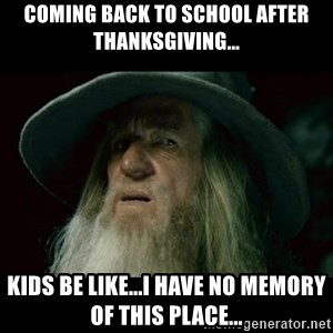 no memory gandalf - Coming back to school after Thanksgiving... Kids be like...I have no memory of this place...