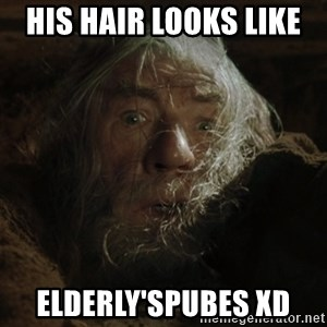 gandalf run you fools closeup - His hair looks like  Elderly'spubes XD